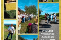 Bienen-Wandertag-2019