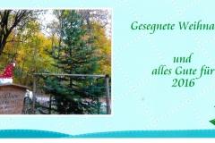 unsere-neu-gepflanzte-kreis-tanne-ende-2015